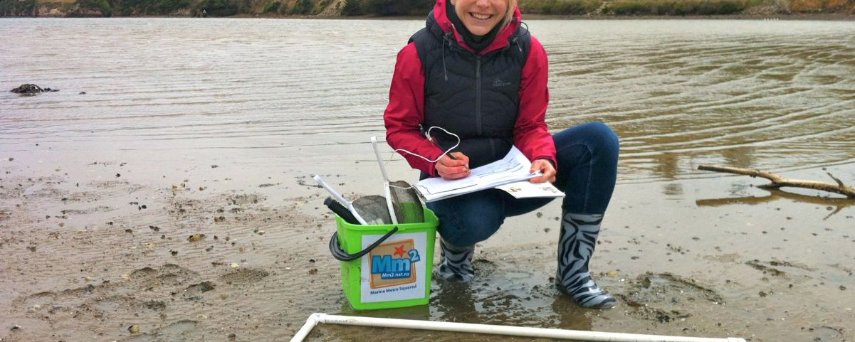 Mm2 Survey on a Muddy Shore